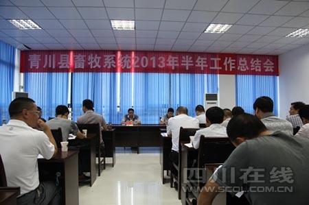 中国梦工作总结